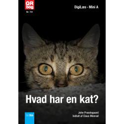 Hvordan ser en kat ud?