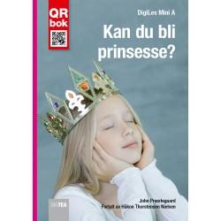 Kan du bli prinsesse?