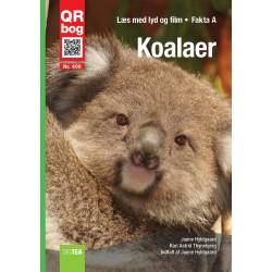 Koalaer